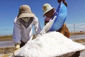 Sản lượng muối quý 1 giảm 2,3% xuống gần 250.000 tấn