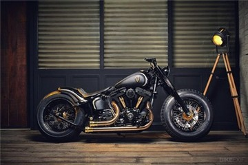 'Quý tộc đen' Harley Softail Slim