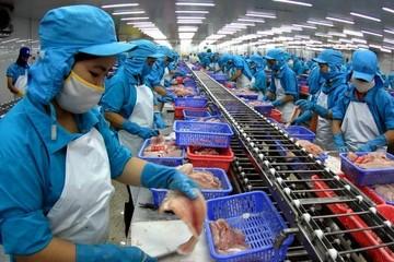 Doanh nghiệp Việt không phá giá cá tra, cá basa ở Hoa Kỳ