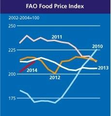 FAO: Giá lương thực toàn cầu lên cao nhất kể từ tháng 5/2013