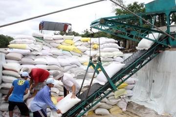 Việt Nam tham gia đấu thầu cung cấp gạo cho Philippines