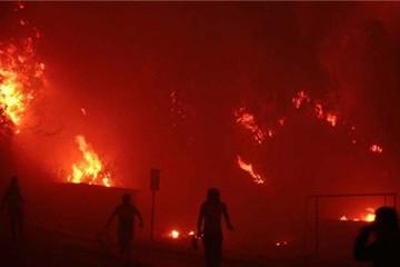 Chile: 500 ngôi nhà bị thiêu rụi vì cháy rừng
