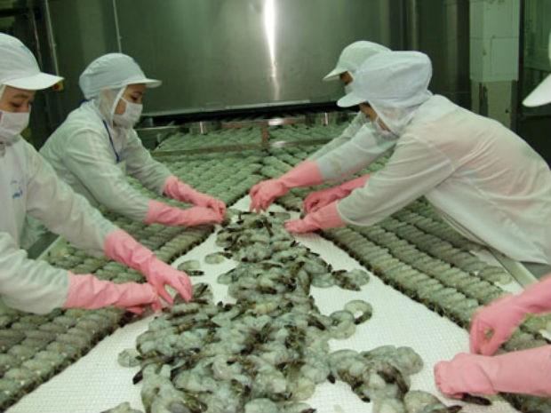 CMX bắt tay với Lotte để nuôi trồng và sản xuất tôm