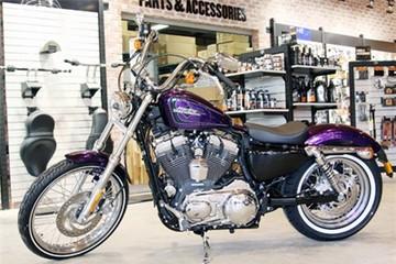 Harley-Davidson màu độc giá nửa tỷ đồng