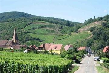 8 vùng rượu nho xinh đẹp nhất nước Pháp
