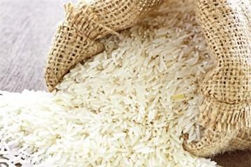 Thua cả gạo Campuchia