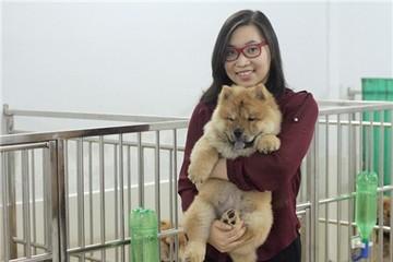 Cô gái Việt sở hữu trại chó giá ngàn đô/con