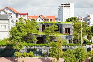 Rộ mốt nhà thiết kế vườn trên cao