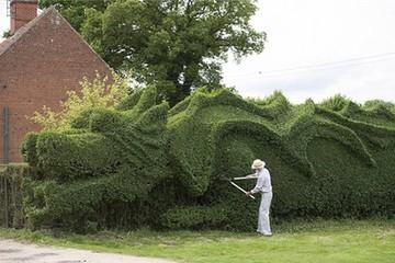 Độc đáo hàng rào hình con rồng khổng lồ ở Norfolk