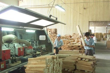 Xuất khẩu gỗ có thể đạt 10 tỷ vào năm 2020