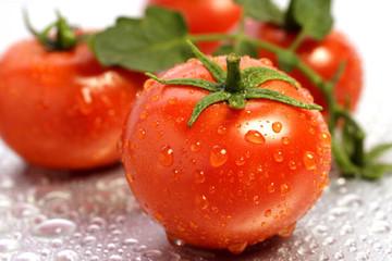 Cà chua dùng làm vật liệu ô tô