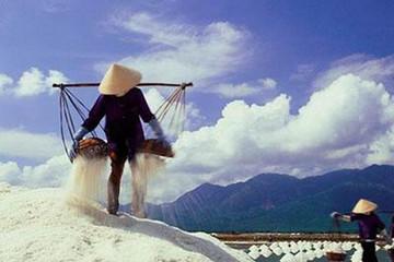 Sản lượng muối 6 tháng tăng 9,3%, nhập khẩu muối giảm 5,5%