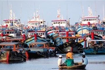 Đầu tháng 7 ban hành chính sách hỗ trợ ngư dân đánh bắt xa bờ