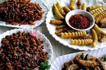 Sử dụng côn trùng làm thức ăn: Cẩn thận mất mạng !