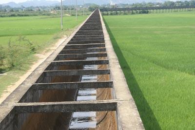 Hà Nội chi 55 tỷ đồng để sửa chữa 44 công trình thủy lợi