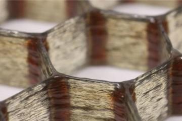 Phát hiện vật liệu nhẹ và bền hơn gỗ balsa