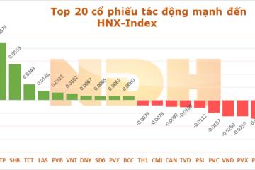 Ngày 30/7: MSN và VNM lấy đi của VN-Index hơn 1,55 điểm