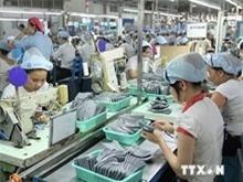 Xuất khẩu của Việt Nam sang Brazil tăng mạnh trong 6 tháng