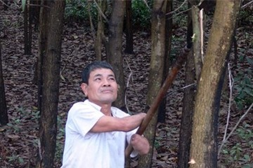 Người nông dân không tay kiếm hàng trăm triệu nhờ trồng rừng