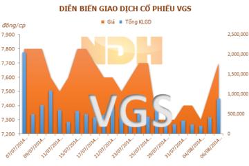 VGS (Hợp nhất): 6 tháng lãi 14,5 tỷ đồng, hoàn thành 88% kế hoạch cả năm