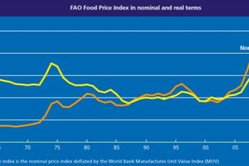 FAO: Giá lương thực toàn cầu tháng 7 giảm xuống mức thấp nhất trong 6 tháng