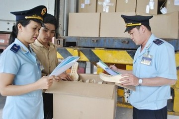 Doanh nghiệp được phép khai gộp lô hàng có nhiều hơn 50 dòng hàng
