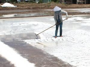 Sản xuất muối 8 tháng đạt hơn 1 triệu tấn, tăng 10,7%