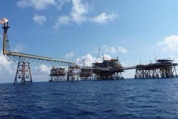 Lỗ lớn, doanh nghiệp họ dầu khí đưa nhau ra tòa