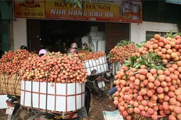 Xuất khẩu trái cây sang Mỹ: Cửa đã mở, nhưng chưa thể mừng