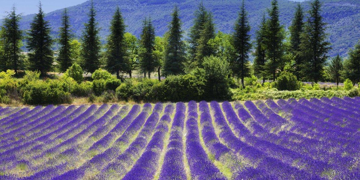 Du lịch Pháp, hãy đến thăm những nơi này