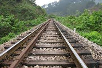 Đường sắt bắt đầu chở hàng đông lạnh