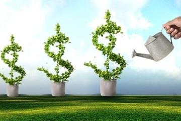 MAFPF1 chốt quyền thanh toán vốn góp bằng tiền do Quỹ hết thời hạn hoạt động