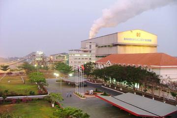 Điện Gia Lai thoái toàn bộ vốn khỏi Mía đường Thành Thành Công