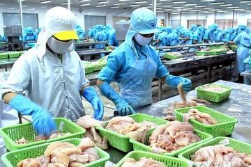 HVG: Nga không tiếp nhận 25 tấn cá basa đông lạnh của Việt Nam