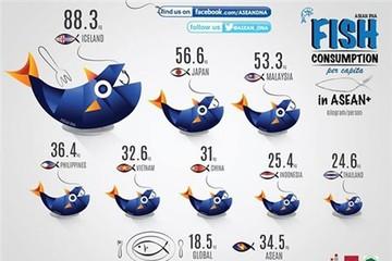 [Infographic] Ăn càng nhiều cá, càng thông minh?
