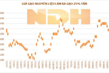 Tuần 3/-9/10: Giá lúa tại ĐBSCL tăng tiếp, gạo thành phẩm giảm nhẹ