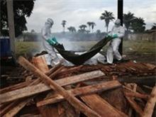[Infographics] Tài chính cho cuộc chiến chống dịch Ebola