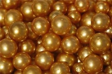 Tận mắt xem sản xuất ngọc trai vàng cực độc