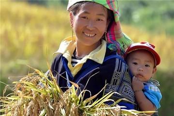 [Infographics] Ấn tượng Việt Nam trong cuộc chiến xóa đói giảm nghèo