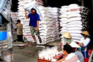 Định danh gạo Việt trước thách thức mới