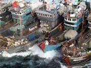 Mỗi năm Hàn Quốc thiệt hại 1 tỷ USD vì Trung Quốc đánh cá