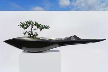Kasokudu – sự kết hợp giữa nghệ thuật cây cảnh và công nghệ ô tô