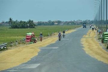 Hợp tác nông nghiệp giữa Việt Nam - Ireland