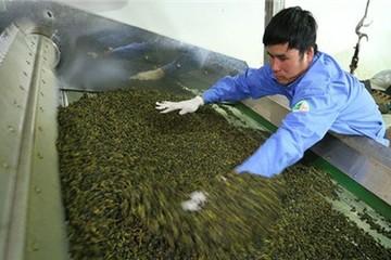 Đài Loan tung tin đồn nông sản VN nhiễm dioxin
