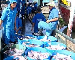 11 tháng, xuất khẩu thủy sản đạt 7,2 tỷ USD, tăng hơn 19% so với cùng kỳ
