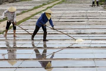 Việt Nam chi hơn 400 tỷ đồng để nhập khẩu muối trong 11 tháng