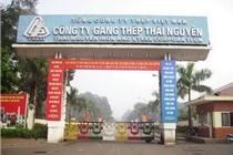 Gang thép Thái Nguyên sẽ chào bán 100 triệu cổ phần cho SCIC trong quý IV/2014 và quý I/2015