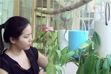 Khá lên nhờ nuôi trồng hàng độc: 3up và hoa treo ngược