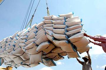 XK gạo sang các thị trường chính tại châu Phi giảm trong 10 tháng đầu năm 2014