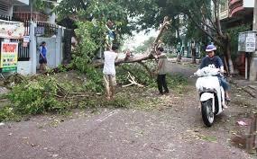 Ngành Điện thiệt hại khoảng 1,2 tỷ đồng do ảnh hưởng của bão số 4